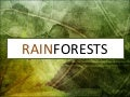Geography - Rainforests