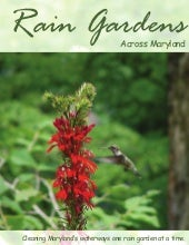 Maryland Rain Garden Manual
