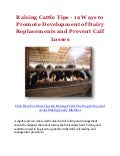 Raising Cattle Tips - 12 Ways to Promote Development of Dairy Replacements and Prevent Calf Losses