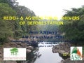 Redd+ & agricultural  drivers of deforestation