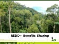REDD+ Benefits Sharing