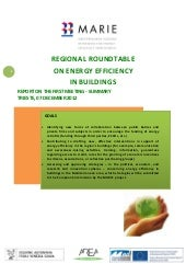 Regional roundtable on energy effic...