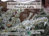 Reinventing Organizations for Enterprise Agility