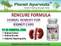 Ayurvedic Treatment for Kidney Failure - Rencure Formula