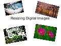 Resizing photos simplified