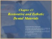 Restorative and esthetic dental mat...