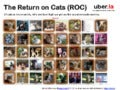 Return on Cats - the ROI of Cute Animal Pics and Memes