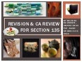 Revision   ca review for section 135 - 3-28-2013