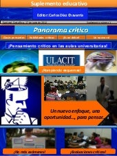 Revista panorama crítico