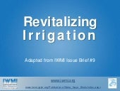 Revitalizing Irrigation