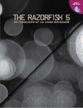 The Razorfish 5: Five Technologies That Will Change Your Business in 2010