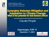 Synergies Between Mitigation and Ad...