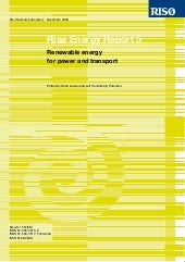 Risoe Energy Report 5