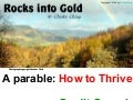 Rocks Into Gold - Helping Programmers THRIVE through the Credit Crunch - by Clarke Ching