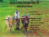 Roles and problems of agriculture