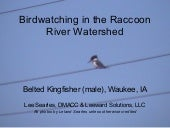 Birds in the Raccoon River Valley, ...
