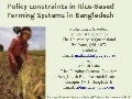 Policy constraints in Rice-Based Farming Systems in Bangladesh