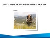 Unit 1: Principles Of Responsible T...