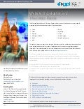 Website Globalization and E Business Russia