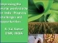 S3.3 Improving the maize productivity in India: Progress,