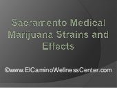 Sacramento Medical Marijuana Strain...