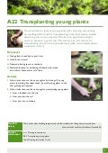 Transplanting Young Plants ~ Teacher Guide, Organic Gardening