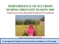 0948 Performance of SCI Crops during Drought Season 2009