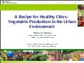 Science Forum Day 3 - Robert Holmer - A Recipe for Healthy Cities - Vegetable Production in the Urban Environment