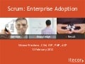 Scrum: Enterprise Adoption