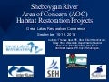 Delivering Results in the Sheboygan River AOC