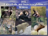 2011 Utah Hunting Seasons