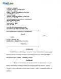 FindLaw | Madoff Account David Friehling's S.E.C. Civil Complaint