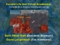 Second Life and Virtual Academics
