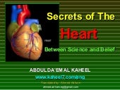 Secrets of The Heart Between Scienc...
