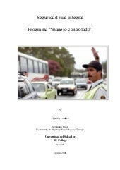 Seguridad Vial   Seminario Final G ...