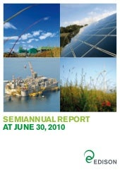 Semiannual Report 30 June 2010