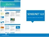 Sense/Net partnership