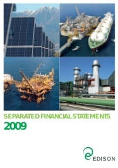 Separate financial Statements 2009
