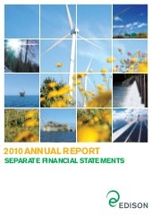Separate Financial Statements 2010