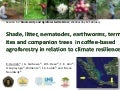 Session 5.3 shade, litter in coffee based agrof in relation to climate resilience