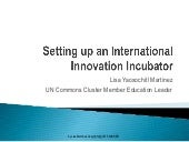 Setting up an International Innovation Incubator