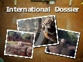 International Outreach Dossier