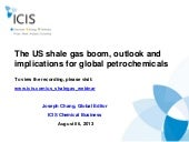 The US shale gas boom, outlook and ...