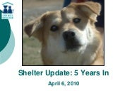 Animal Shelter Strategic Plan