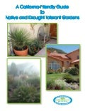 A California-Friendly Guide to Native and Drought Tolerant Gardens