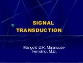 Signal Transduction Revised