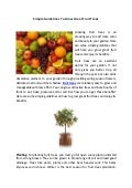 Simple Guidelines To Grow Great Fruit Trees