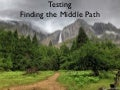 Finding the Middle Way of Testing