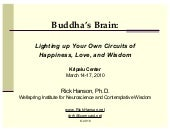 Buddha's Brain: Lighting up Your Ow...