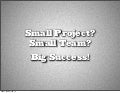 Small Project? Small Team? Big Success!